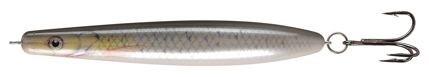 Witch Threadfin Shad TS LF
