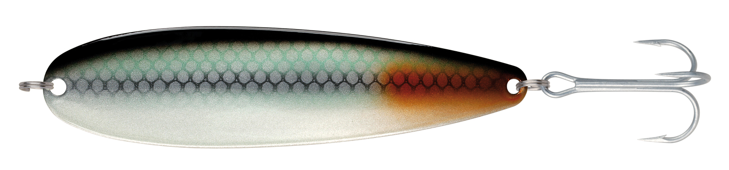 BC#2 S Greenish Whitefish